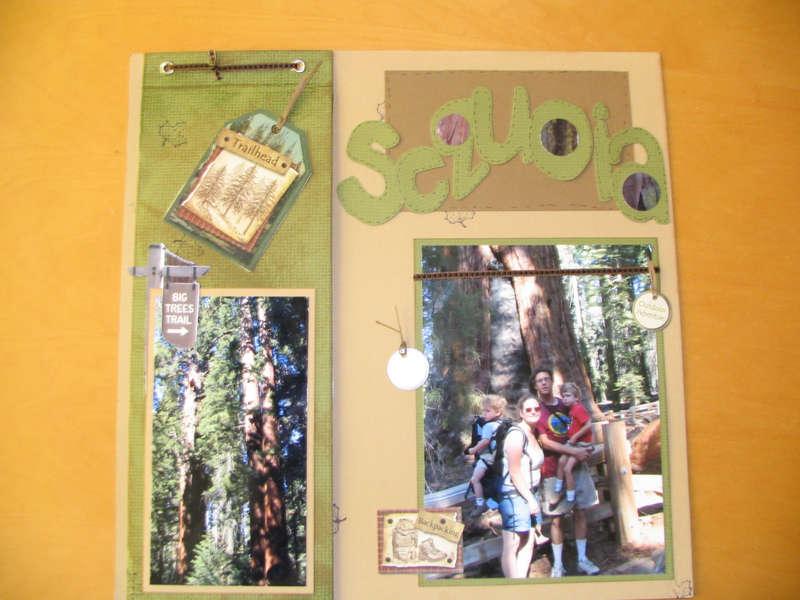 Sequoia: Twist and Flip Pocket Page