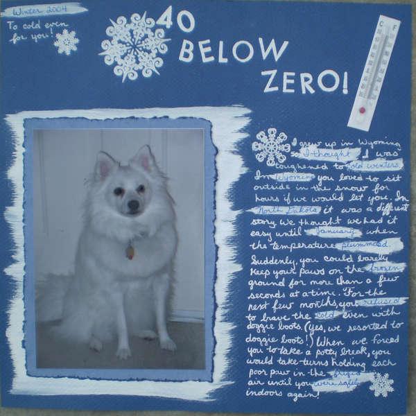 40 Below Zero!
