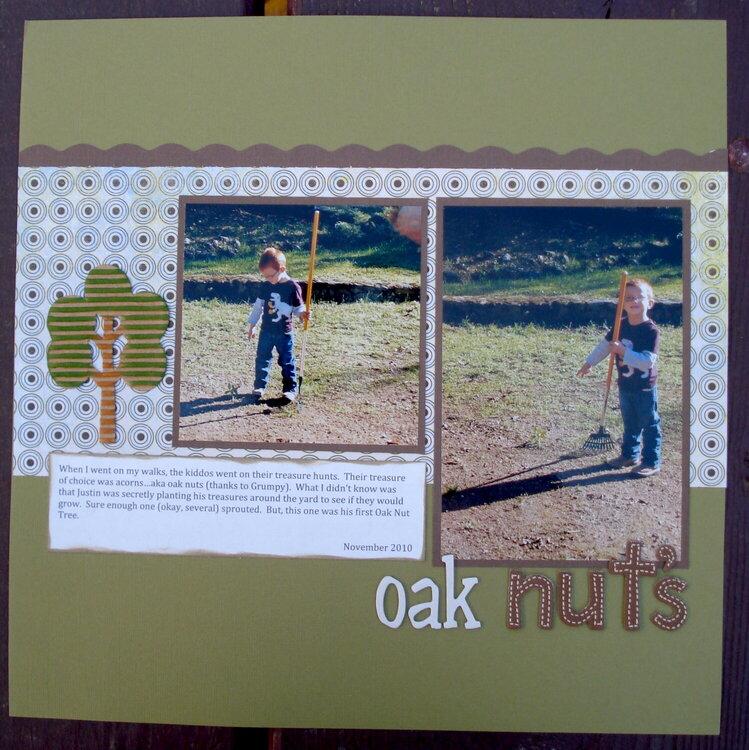 Oak Nuts