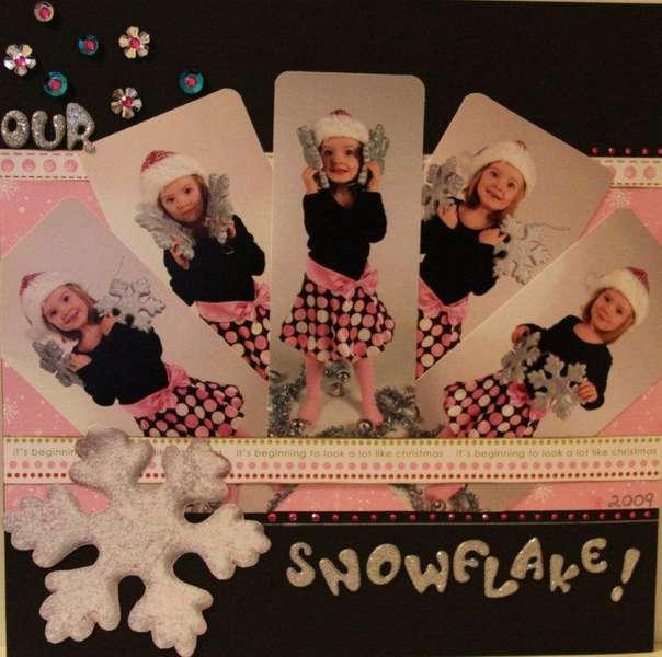 Our Snowflake