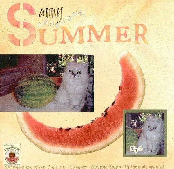 Sunny Sensational Summer