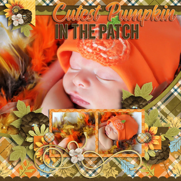 Pumpkin Patch by Lauries Scraps