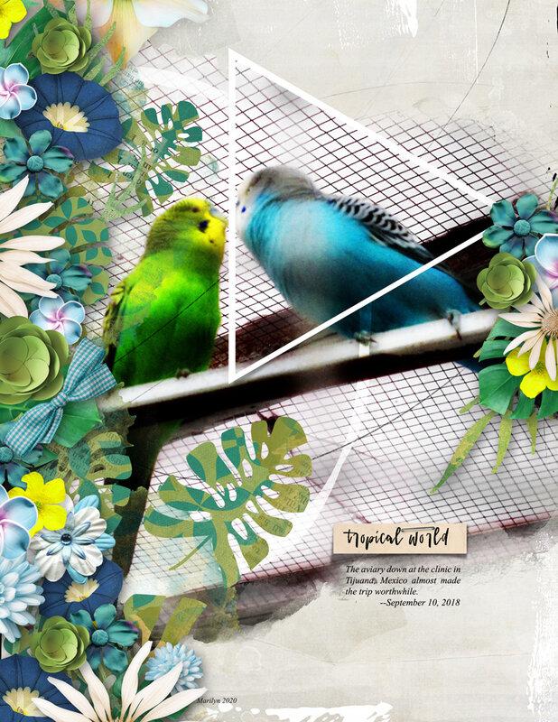 Jen Maddocks Designs