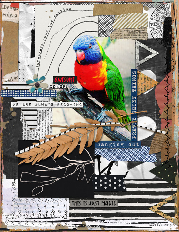 Rachel Jefferies Collage Challenge at The LilyPad