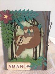 Shadow box-sloth