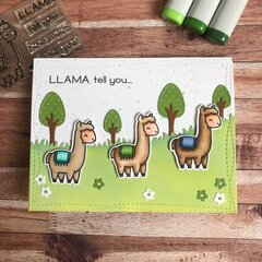 Llama Tell you