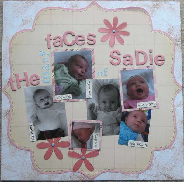 The many faces of Sadie
