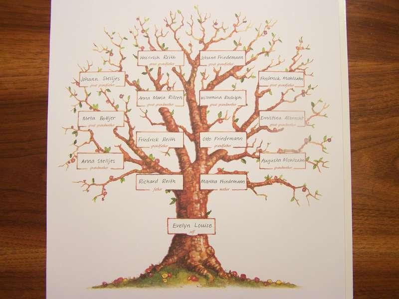 My Grandmother's Family Tree
