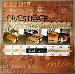 Investigate the box