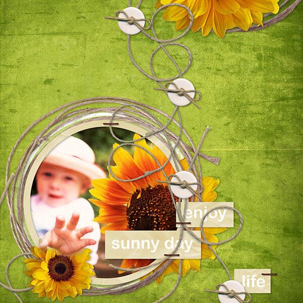 Enjoy Life and Sunny Days