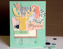 Stay Curious Card