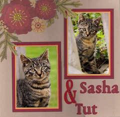 Sasha & Tut