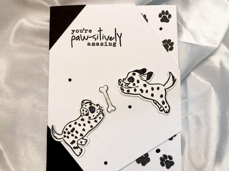 Amazing Dalmatians