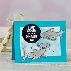 FSJ Live Like It's SHARK WEEK!
