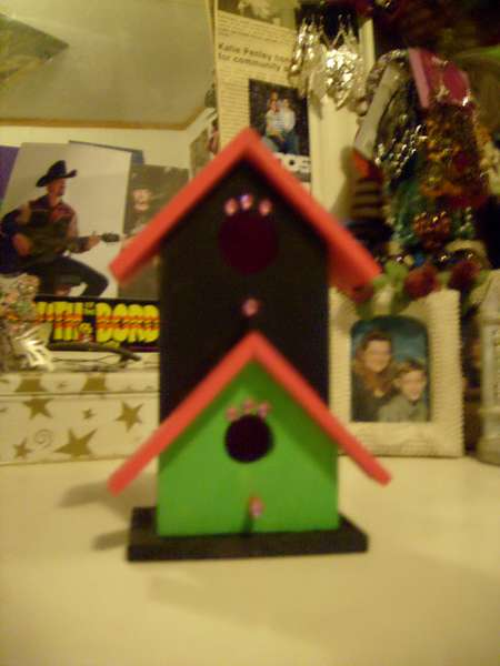 Black, Pink, and Green Birdhouse