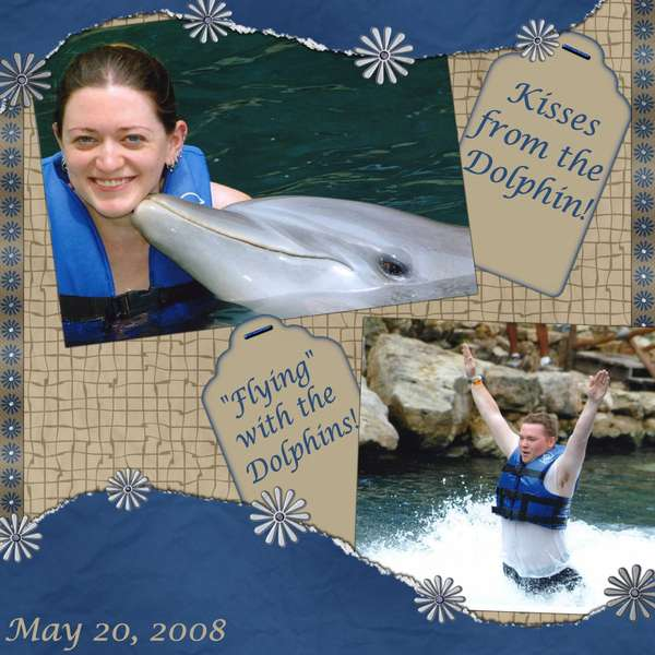 Page 13 - Swimming with the Dolphins