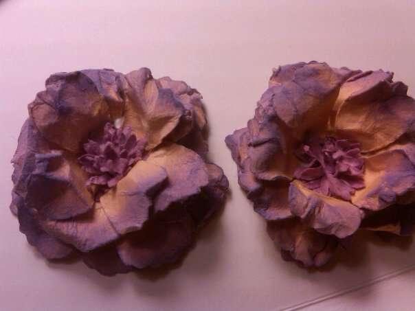 purple and beige flowers