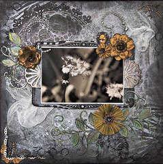 Dandelion Jungle - Scraps of Darkness