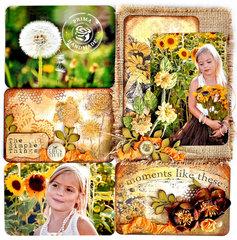 Sunflowers - Prima