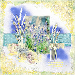 Lavender Fields - Blue Fern Studios