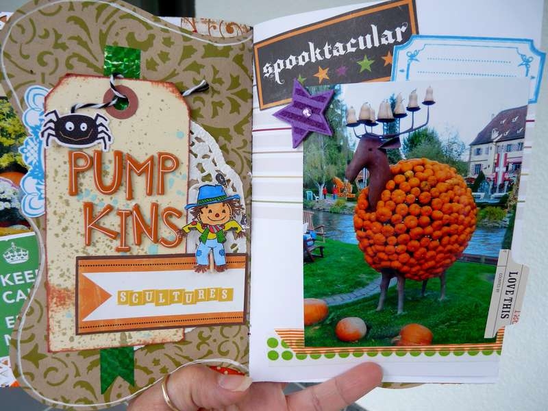 Autumn Daybook