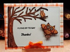 Fly By Owl