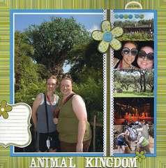 Animal Kingdom 2007