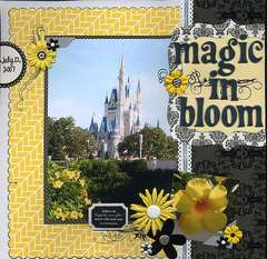 Magic in Bloom