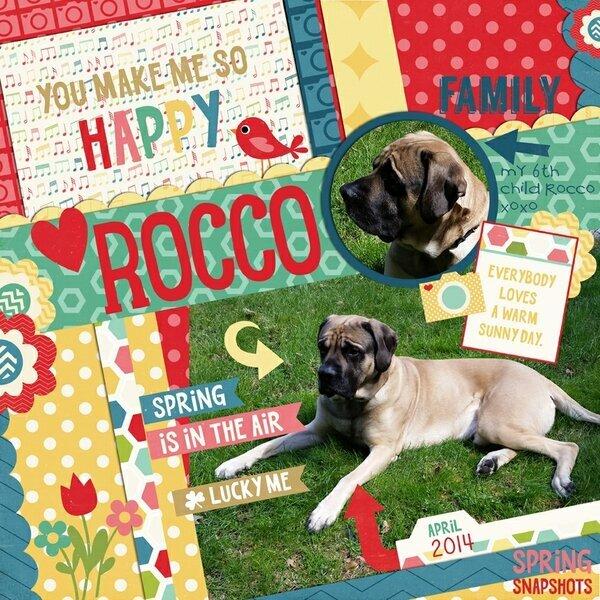 Rocco-Spring