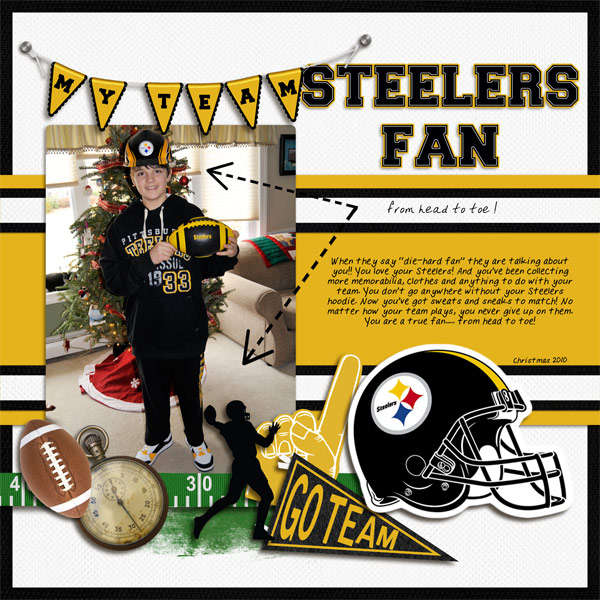 Steelers Fan Head to Toe