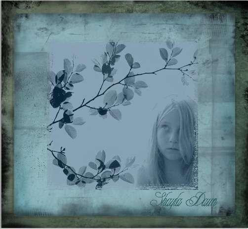 Shayla Dawn