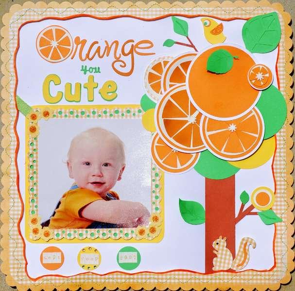 Orange You Cute