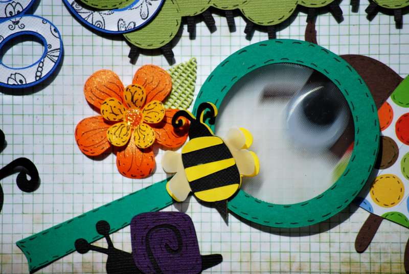 Close Up of Magnify glass from Bug On Cute