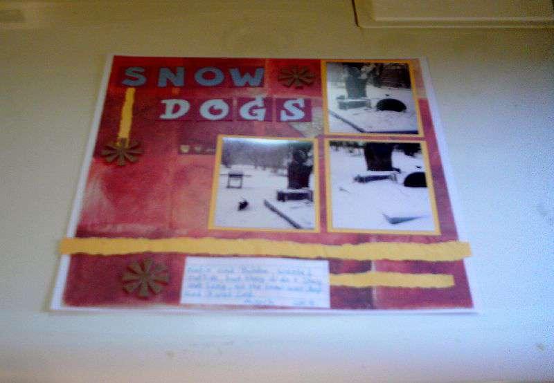 Wk. 9  -  Snow Dogs