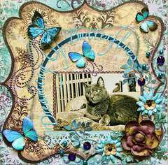 Dreaming Of Butterflies ***SWIRLYDOOS***
