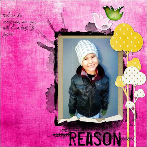 My reason!