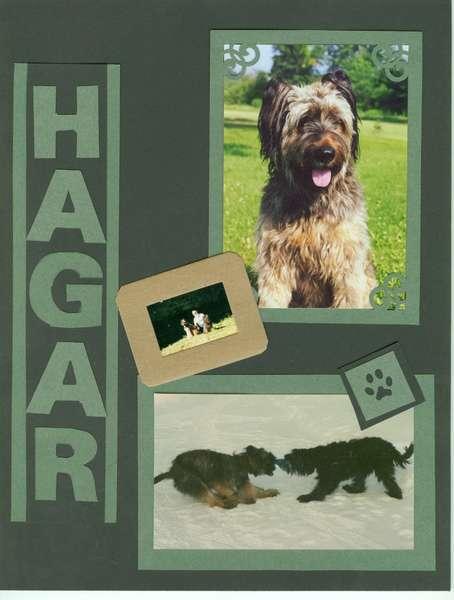 Hagar Left