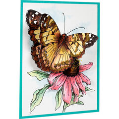 Painted Lady Card