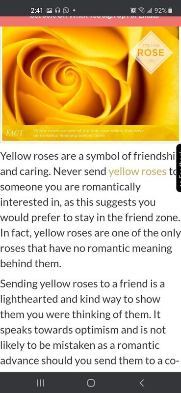 The Yellow Tea Rose the official flower of Sigma Gamma Rho Sorority Inc.