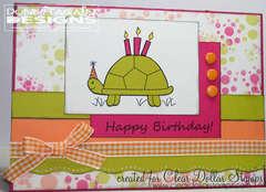 Happy Birthday - Turtle!