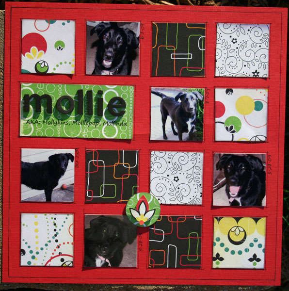 Mollie  AKA: Mollykins, Molliepop, Mollinda