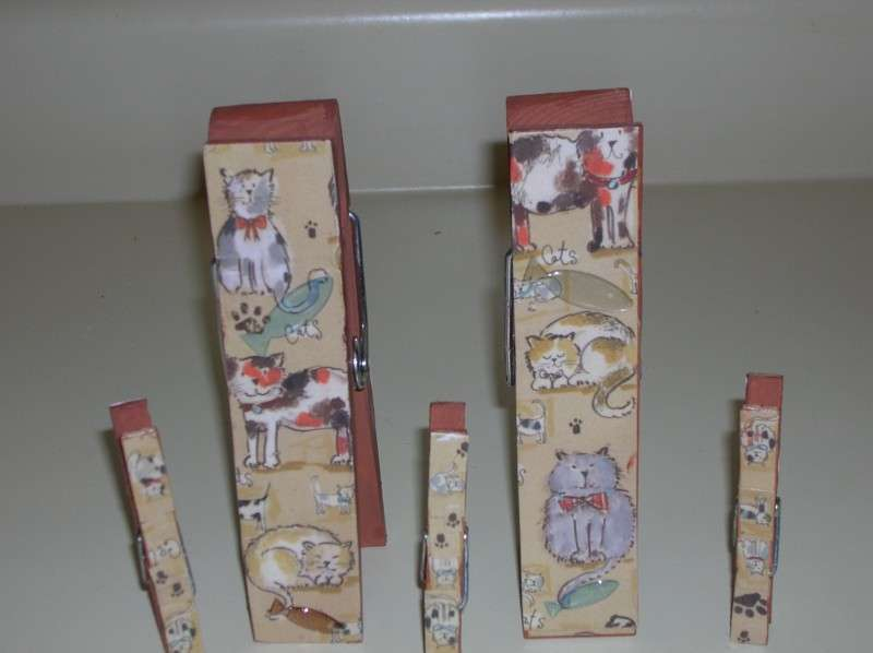 Picture holder clothes pins