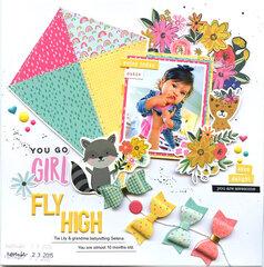 NSD-fly high