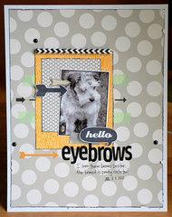 Hello Eyebrows