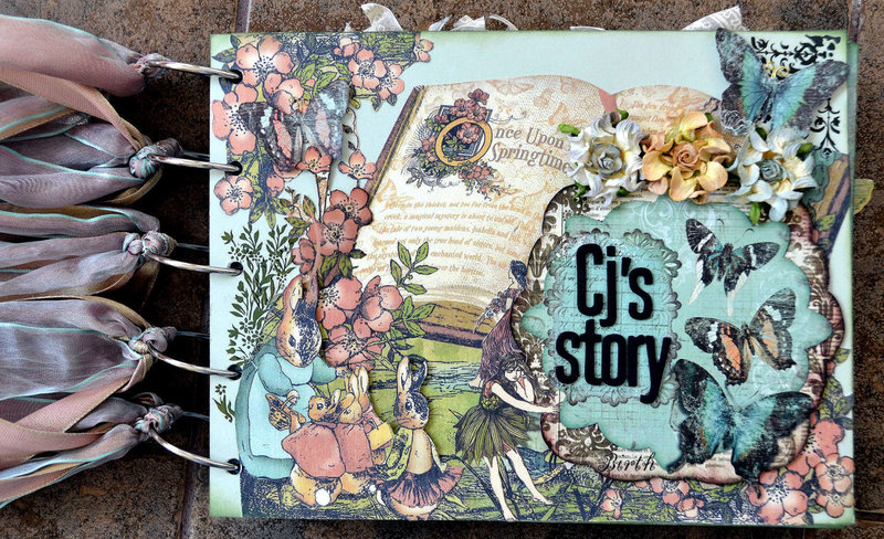 CJ's Story - Cover