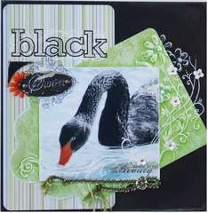 Black Swan - Technique Challenge, Doodle Challenge, No Journaling Challenge, Monthly Color Challenge