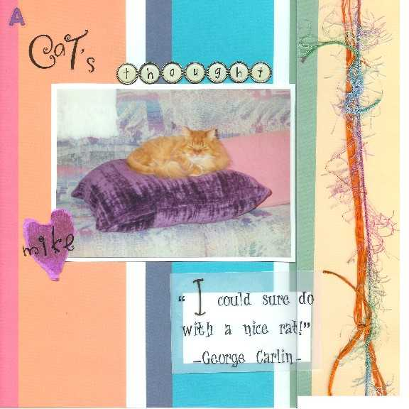 A Cat's Thought