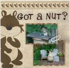 Got a Nut?