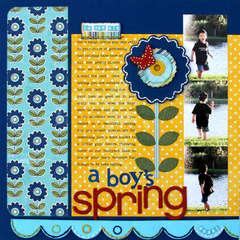 A Boy's Spring