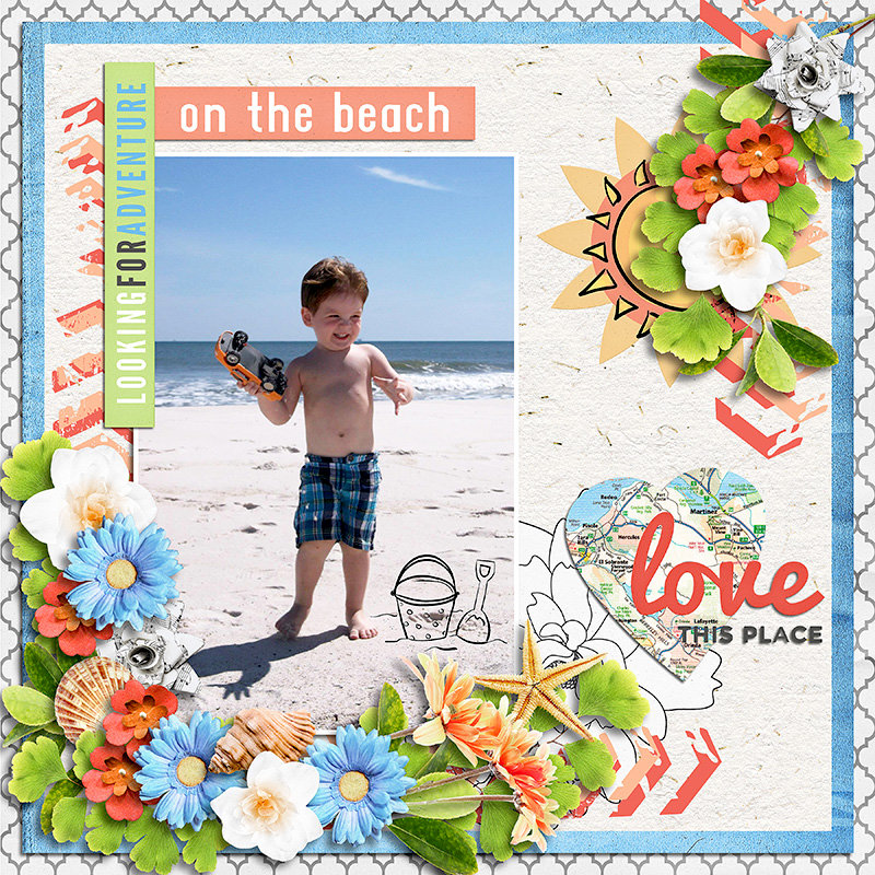 Adventure on the Beach
